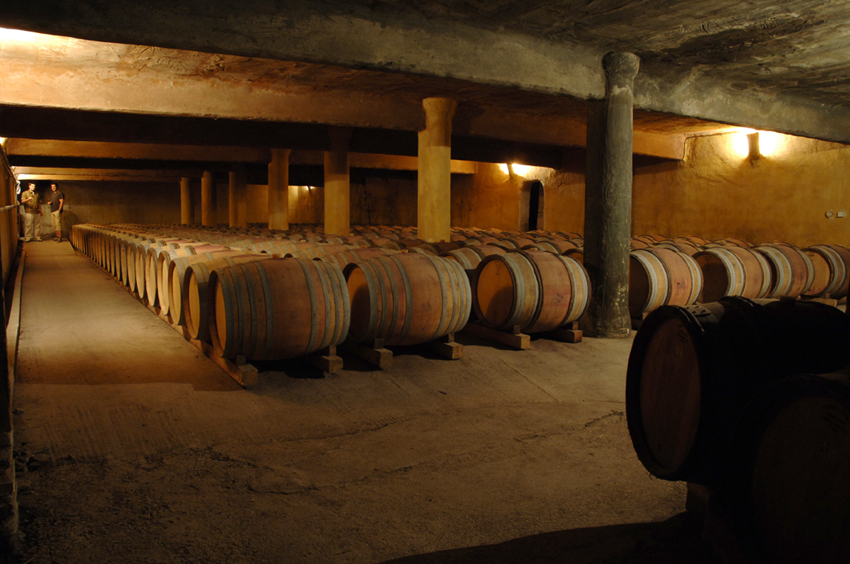 Cave et chai du Mas Daumas Gassac