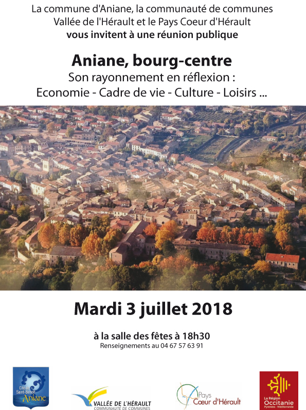 affiche reunion publique Aniane
