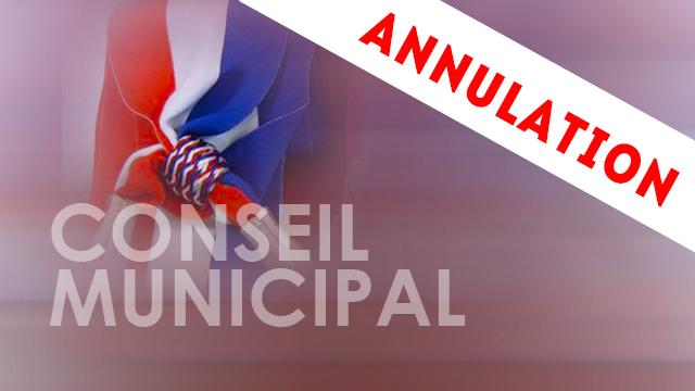 conseil-municipal-report